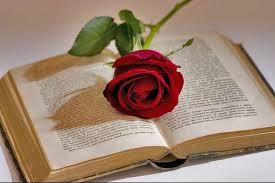 libros-rosas